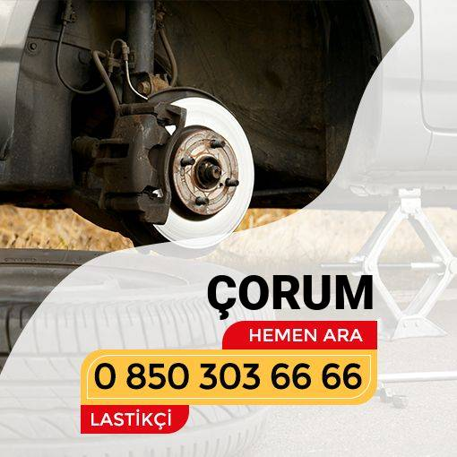 Arzum Pınarı Lastikçi